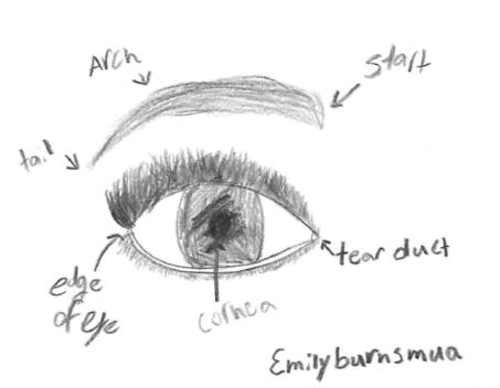 emilyburnsmuaeyebrows